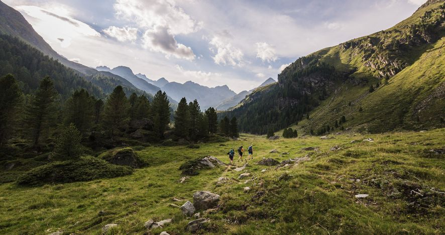 Hiking Mountains Nature South Tyrol